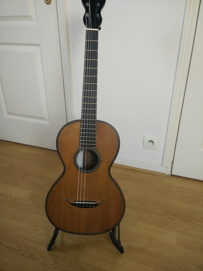 sauvetage d'une guitare romantique  - Page 2 Img_2010