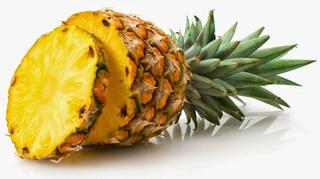 Thème 2 : Plantes à fruits comestibles : Chapitre 6 : Ananas Ananas12