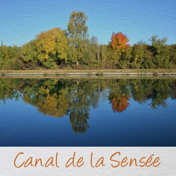 Challenge Visiteurs n°2 - Page 3 Canal10