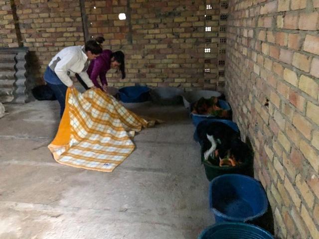 6 okt  - 2 pallets voor Huellas con Esperanza  24993610