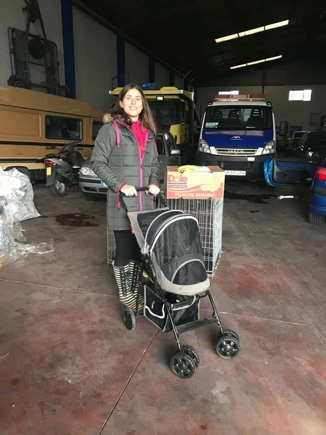 9 Feb - 2 pallets aangekomen bij Canis y Felis 29066314