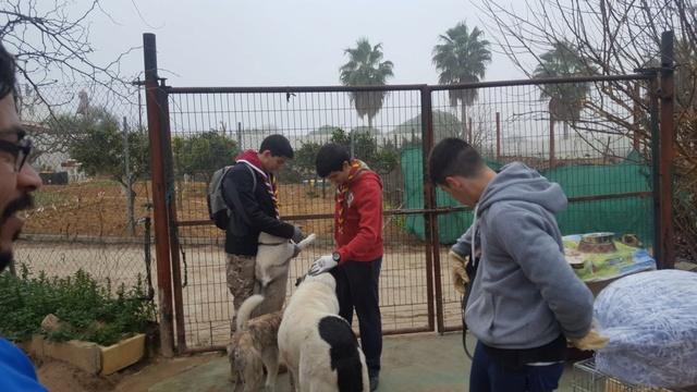 Opbouwen nieuw verblijf honden Palili Img_5918