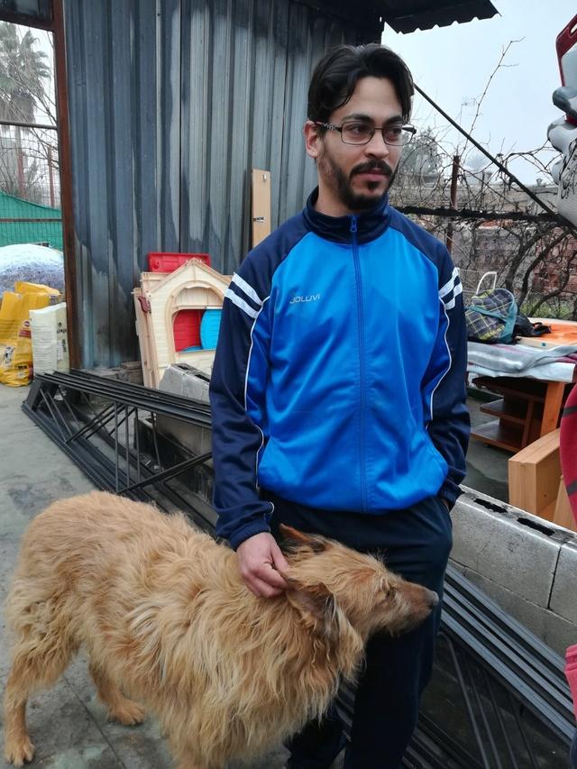 Opbouwen nieuw verblijf honden Palili Img_6016