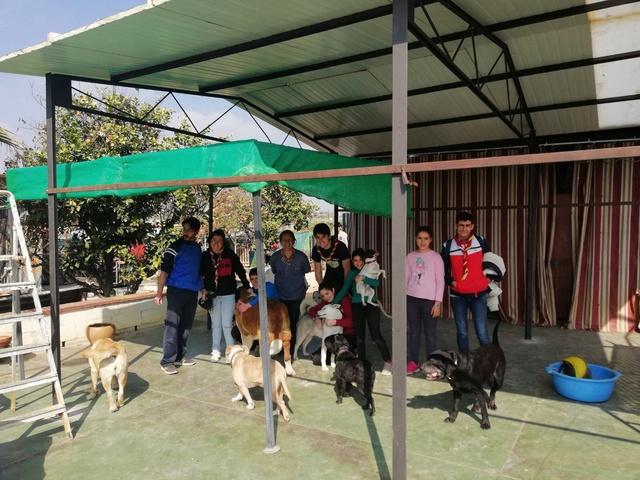Opbouwen nieuw verblijf honden Palili Img_6020