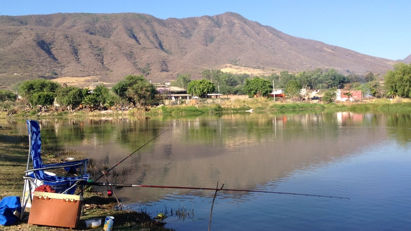 Fishing Report - El Llano, Ixtlahuacan 19077311