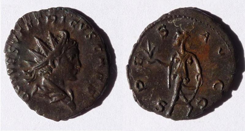 Tétricus II Tetric14