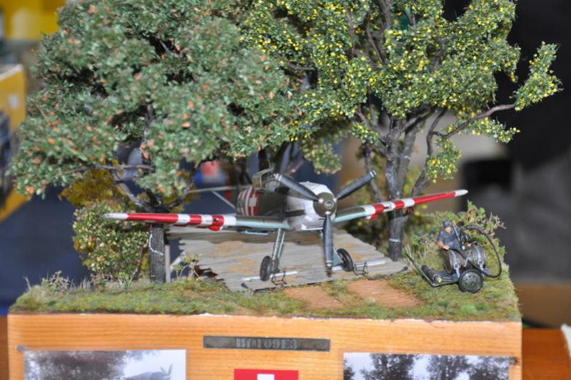 Photos expo IPMS Thun (Suisse) et le PanzerMuseum Dsc_0140
