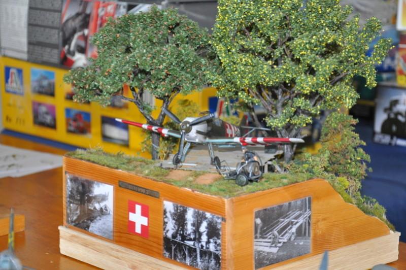 Photos expo IPMS Thun (Suisse) et le PanzerMuseum Dsc_0148