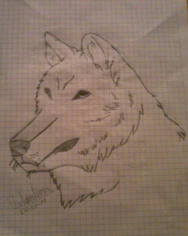 mis dibujos off-topic - Página 2 Wolf_b10