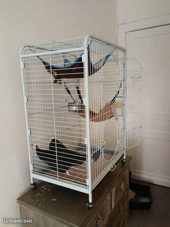 Vends grande cage (59) 51f37310