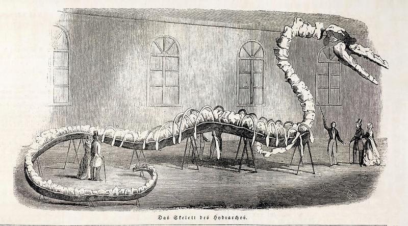 Cryptozoologie  1846-h10