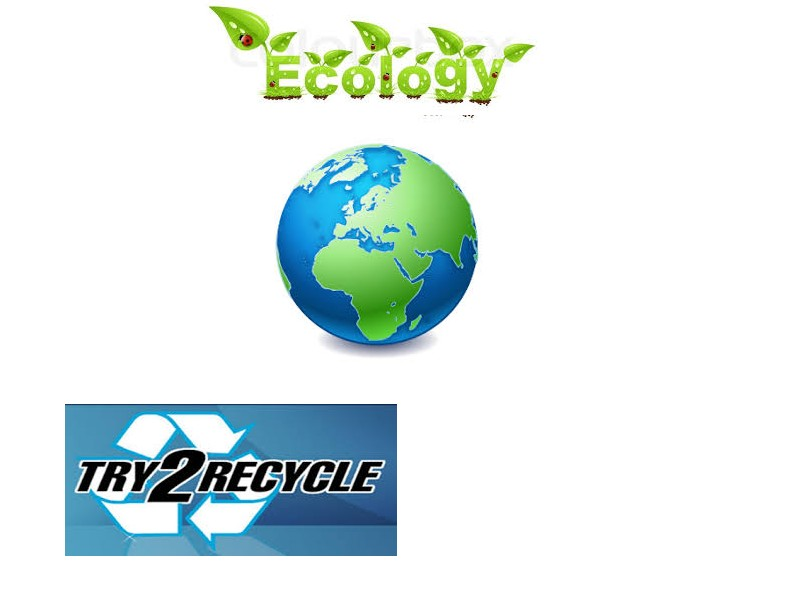 Try to recycle          Anglai12