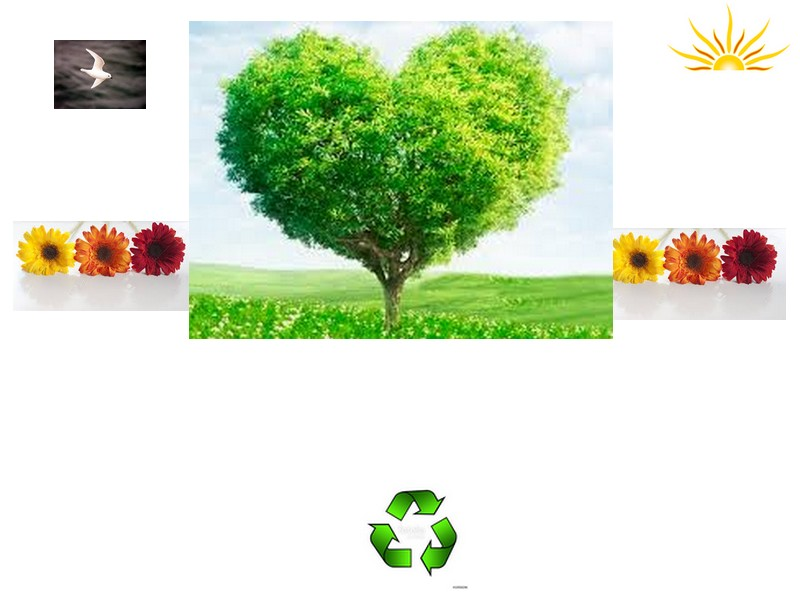 lend a hand to save trees Land_a10