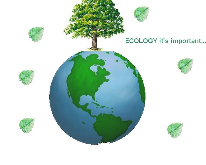 Ecology it's important... Sans_t11