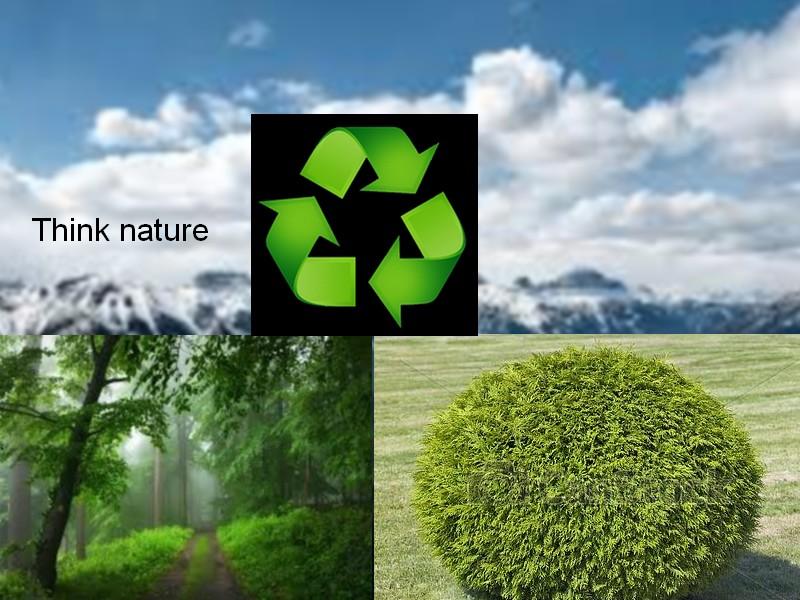 think nature Shana_10