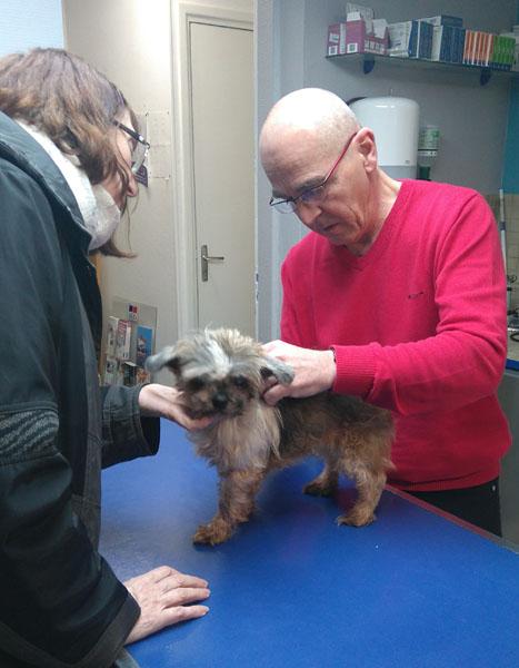 Visite vétérinaire (23 janvier 2018) Rosy-v11