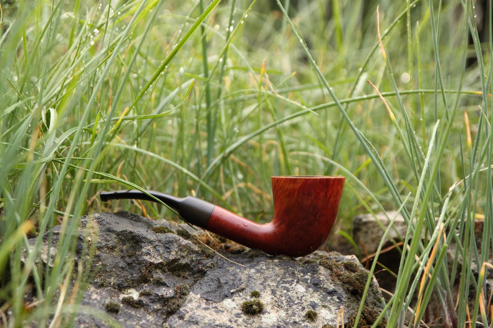 Veuillez trouver 6 juin les tabacs souhaités  Img_1060