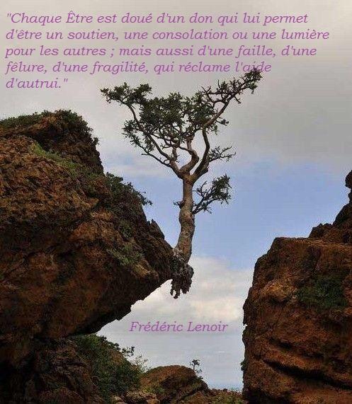 (Re)[Présentation du Tigre], du Kalthu, de la néo-philosophie kalthuienne.  - Page 16 Freder12