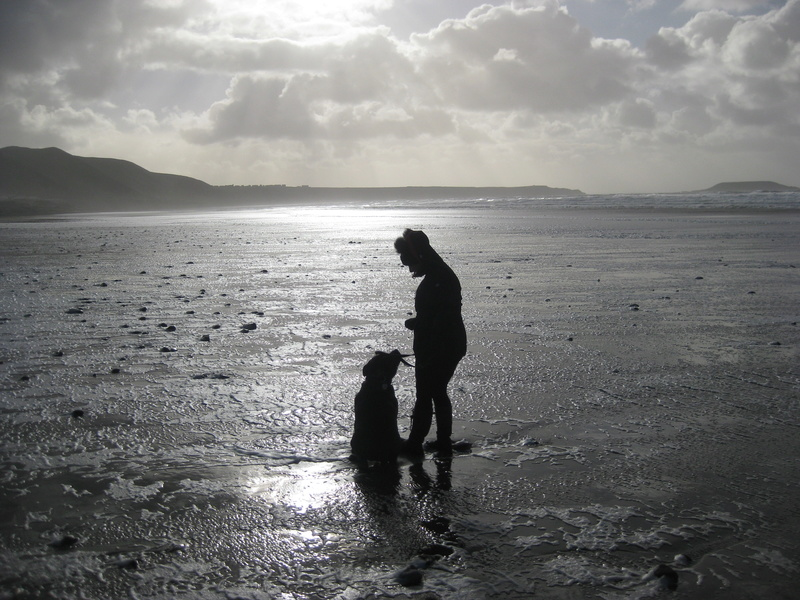 A few of our hollibobs last November  Img_7211