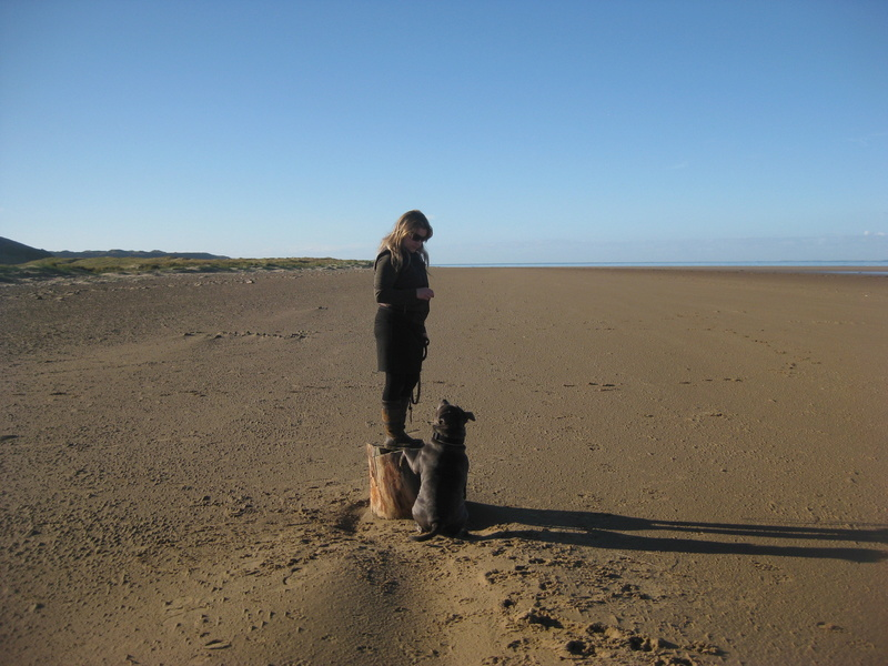 A few of our hollibobs last November  Img_7214