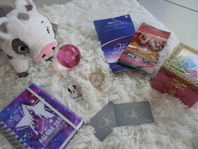 Notre collection Disney ! ♡ P1060213