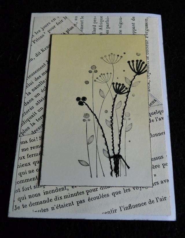 CROP anniv - Défi n°2 - carte Dyfi210