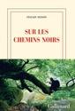 mondialisation - Sylvain Tesson - Page 3 Chemin10