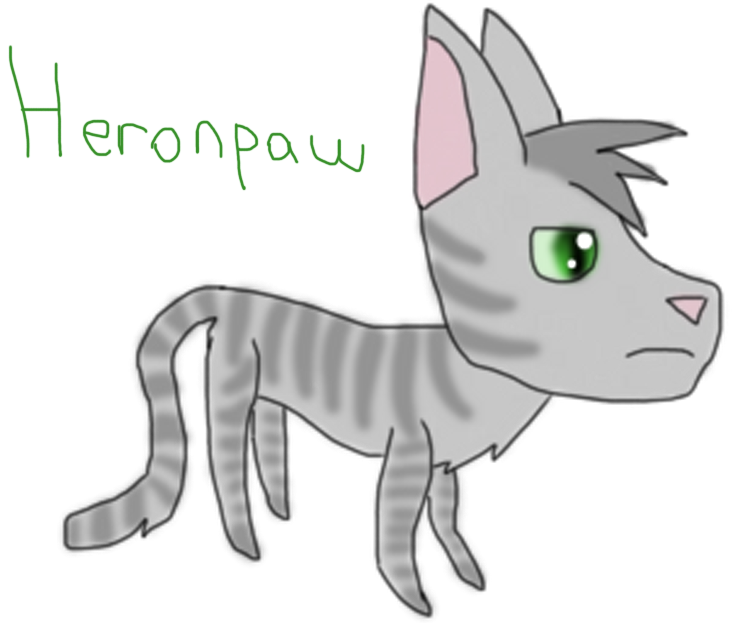 Pebblekit of WindClan Heronp10