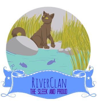 Pebblekit of WindClan Image10
