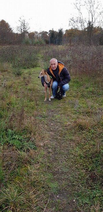 MELLINA petite crevette rousse Scooby France  Adoptée  - Page 4 24203710
