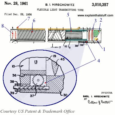 Quem Inventou o Endoscópio? Hirsch10