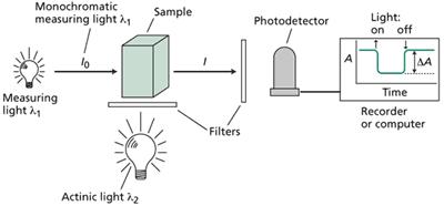 Princípios de Espectrofotometria Wt070113