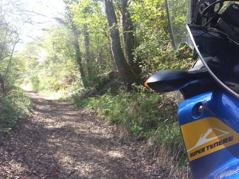 Maxi Trail Rando 20180410