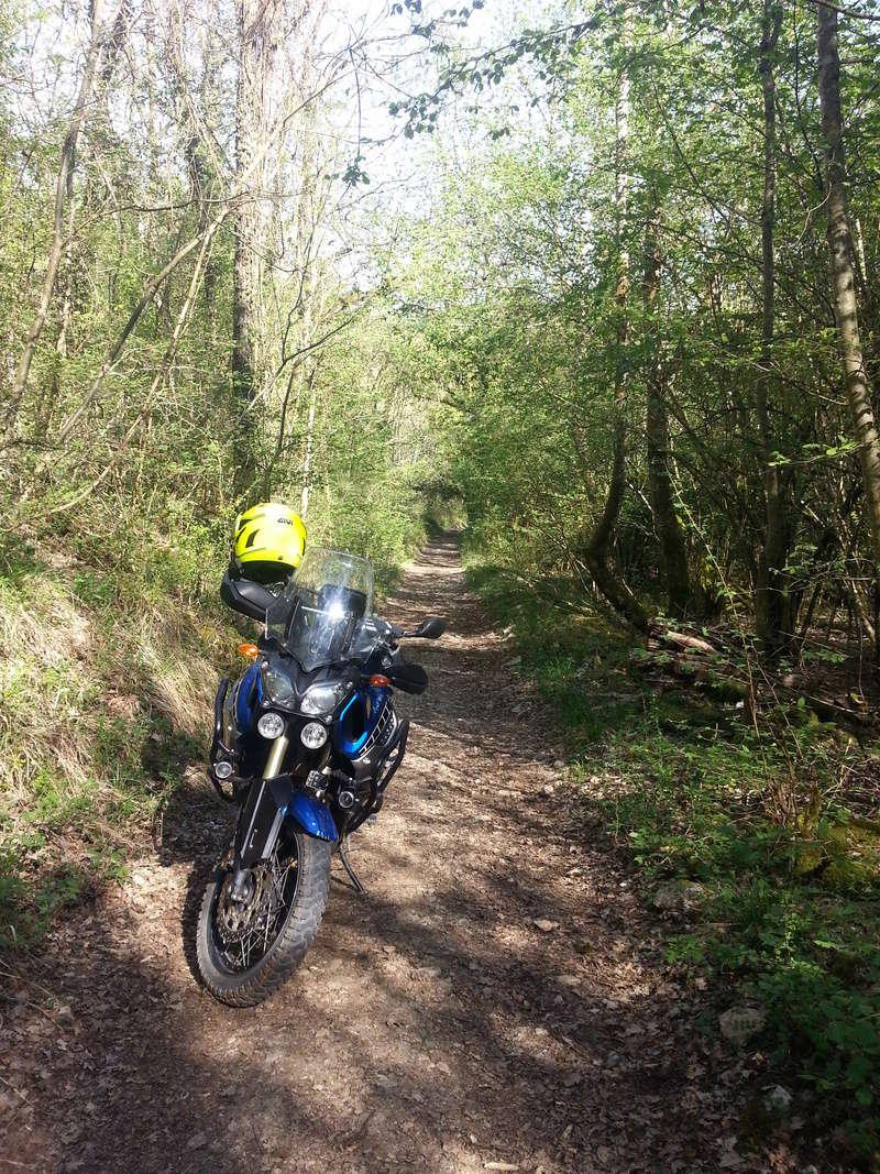 Maxi Trail Rando 20180412
