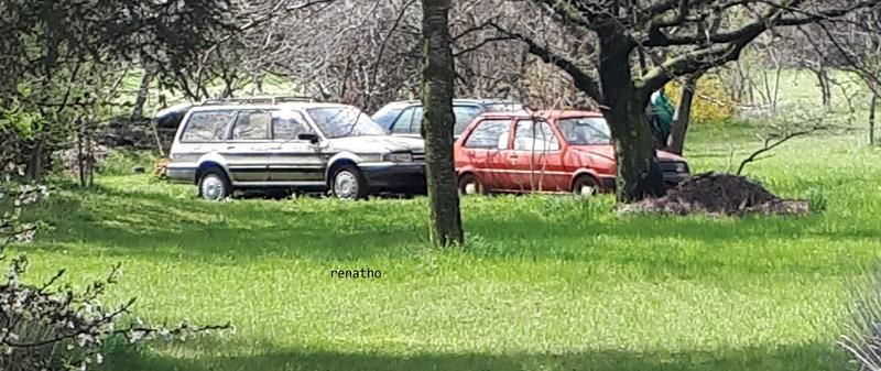Auto Abbandonate - Pagina 40 20180313