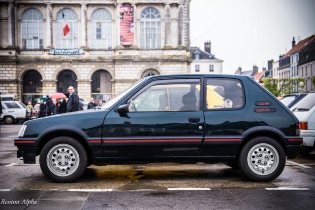 Nuancier peinture carrosserie 205 GTI CTI RALLYE 31030810