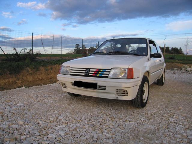 Nuancier peinture carrosserie 205 GTI CTI RALLYE 31310410