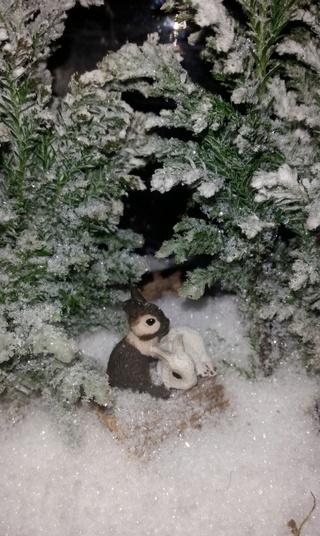 Chérie j'ai rétréci le jardin ! 2017-116