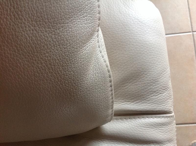 Canapé cuir et whippet ? Image618