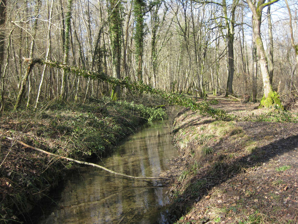 Sortie dans l'Aisne 20-ret10
