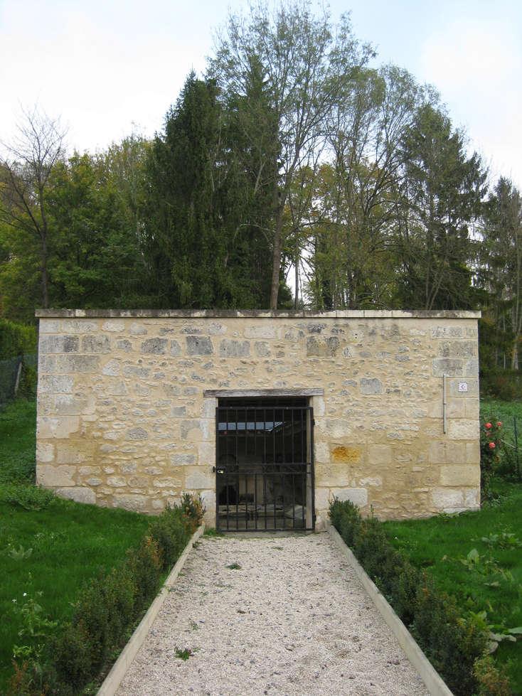 Sortie forêt de Retz (Aisne) 25_lav10