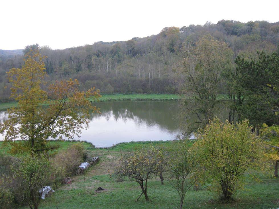 Sortie forêt de Retz (Aisne) 26_pay10