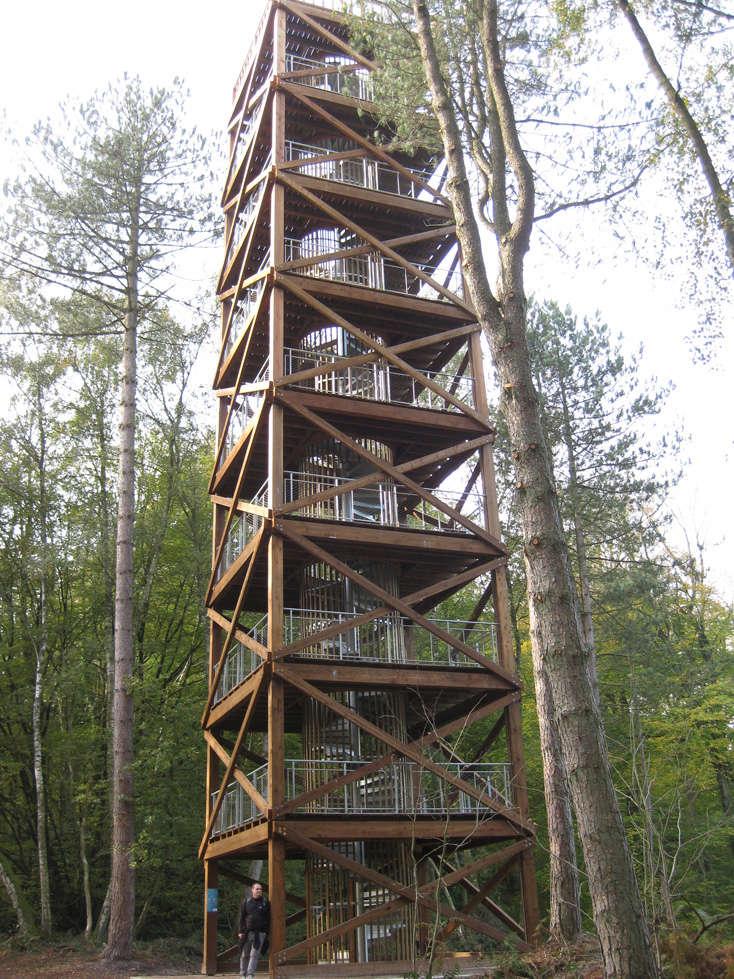 Sortie forêt de Retz (Aisne) 3_tour10