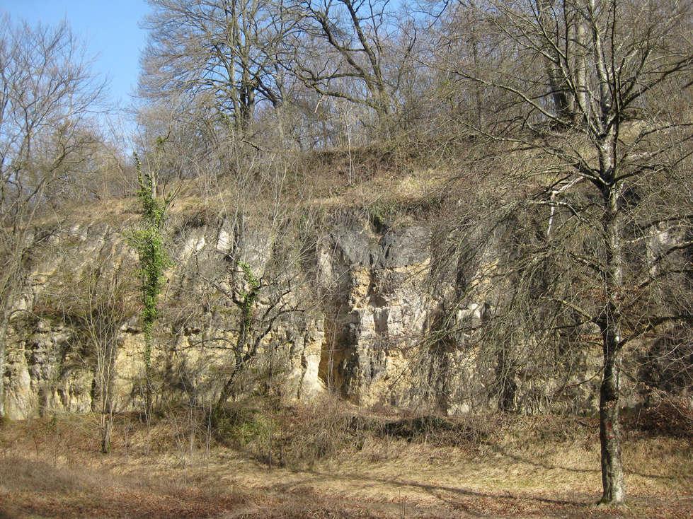 Sortie dans l'Aisne 5-peti10