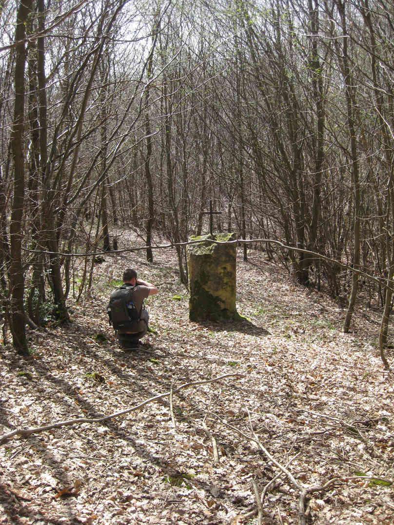 Sortie dans l'Oise forêt de Retz 6-monu10