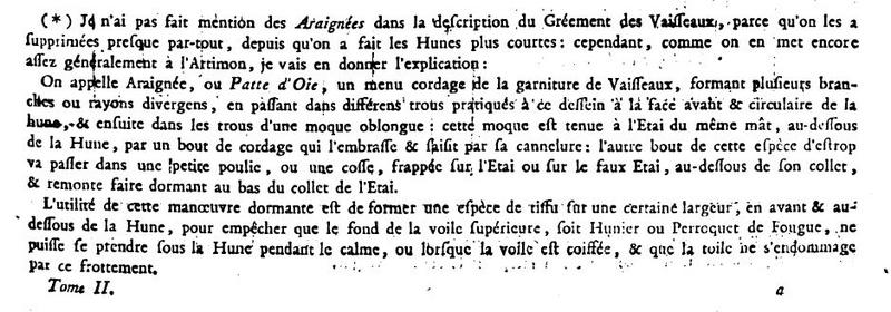 l'HERMIONE  Araign10