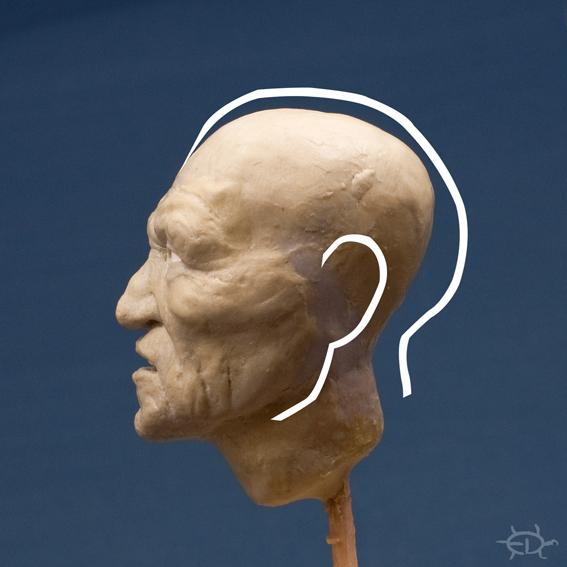 Buste-portrait de vieux chef de guerre Delaware (Sculpture) Edan_510
