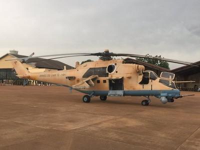Armée Nigériane / Nigerian Armed Forces - Page 13 A1852610