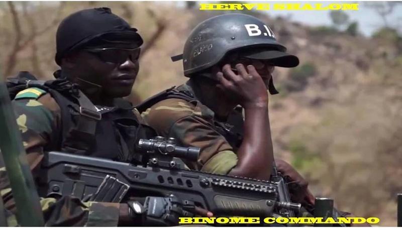 Forces Armées Camerounaises - Page 7 A2200910