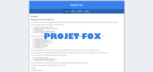 PROJET FOX ! Projet10